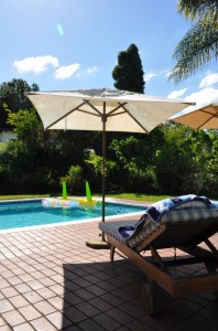 Plumbago Guesthouse Swimming Pool